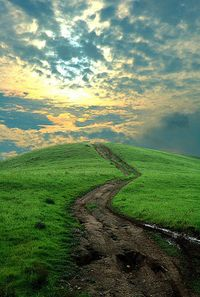 Narrow is the path that leads to life.