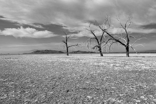 Day in the desert.